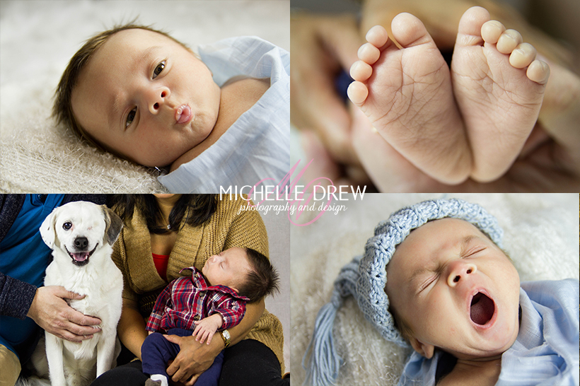evie-newborn-family_001